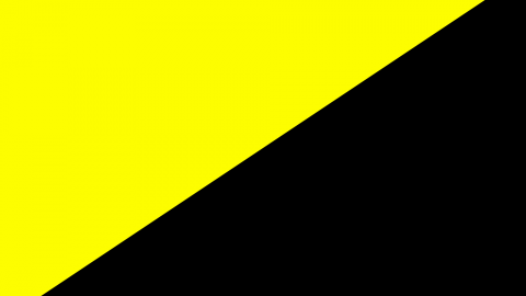 Why Anarcho-Capitalistists Should Still Vote
