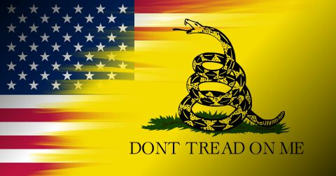 Embracing Libertarianism Will Make You a Better American