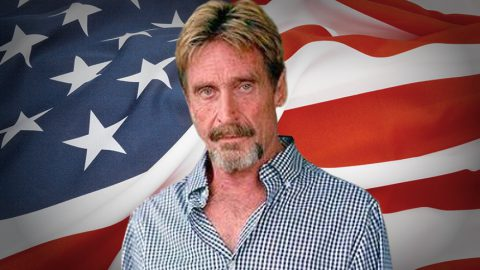 John McAfee: 'Iran Hacked The DNC, And North Korea Hacked DYN'