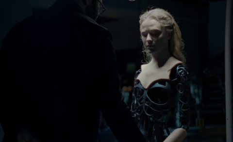 Westworld and the Roots of Self-Ownership – The Chief's Thoughts